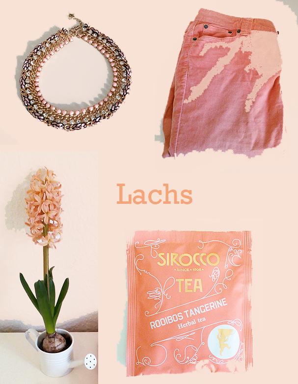 Lachs-Moodboard