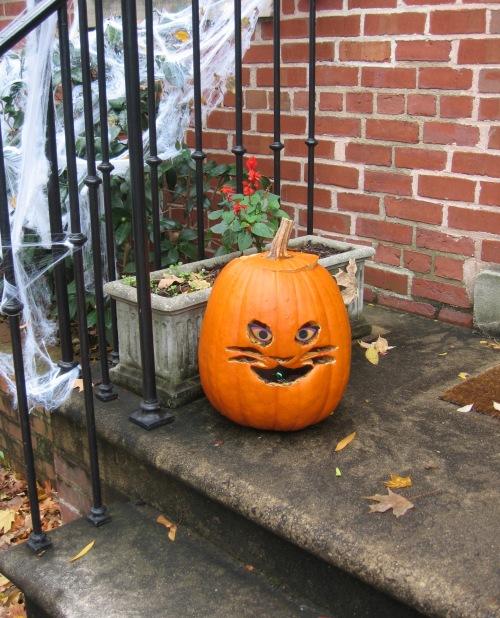 Kürbis als Halloween-Katze